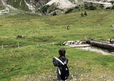 Alpe Hinterentschen